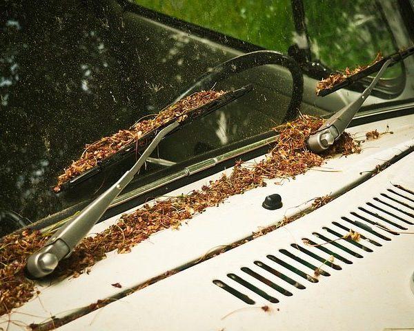 Metlice brisalcev skrbijo za varno vožnjo