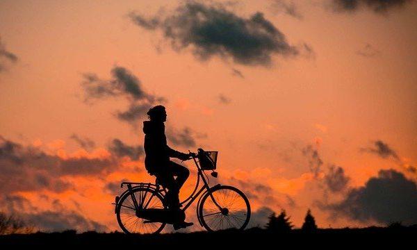 Treking kolesa za več kondicije
